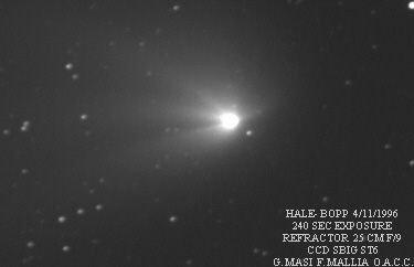 haleb-1.jpg
